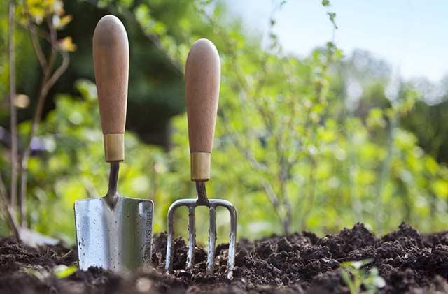 Des jardiniers se déplacent pour assurer des services tonte gazon à domicile