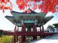 Visiter quelques plus belles villes lors d'un voyage au Corée du Sud